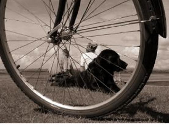 Z obyčajného bicykla elektrický za menej ako minútu!  07cbfdf178e